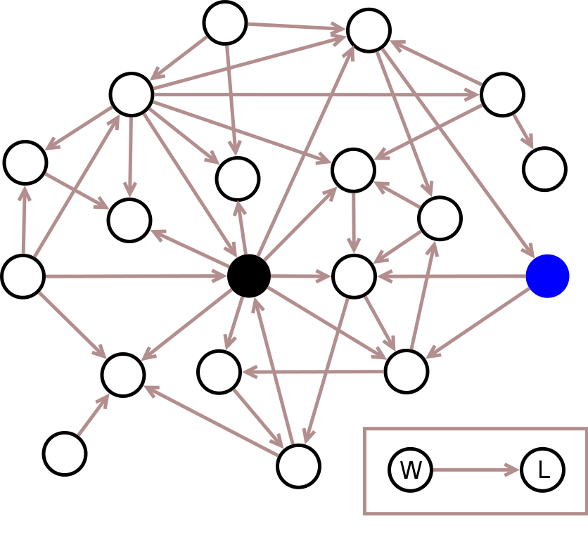 Figure 1: all winner/loser interactions recorded. As depicted in the box, the arrow denotes which individual is the winner (W) or loser (L) in a connected pair.